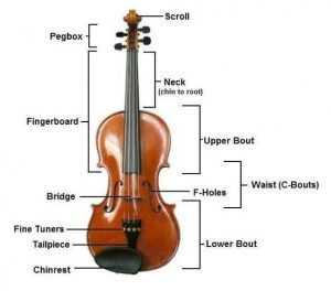 Violin Construction - WIKI