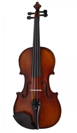 violin_29f_m3_1